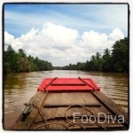 20.-Riverboat-cruising-Mekong-Delta-150x150
