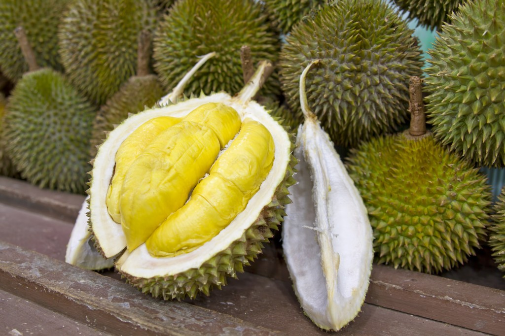 fruits, asie sud est, durian